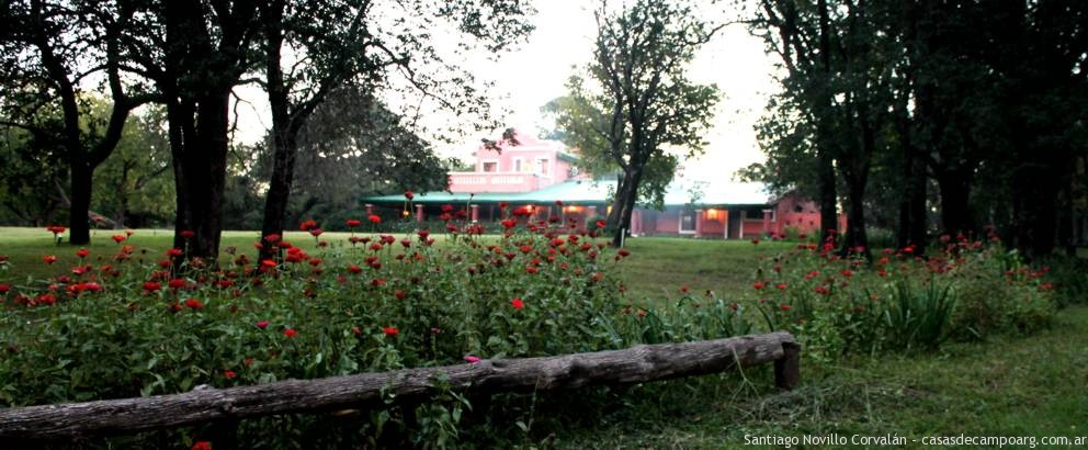flores_del_jardin_2
