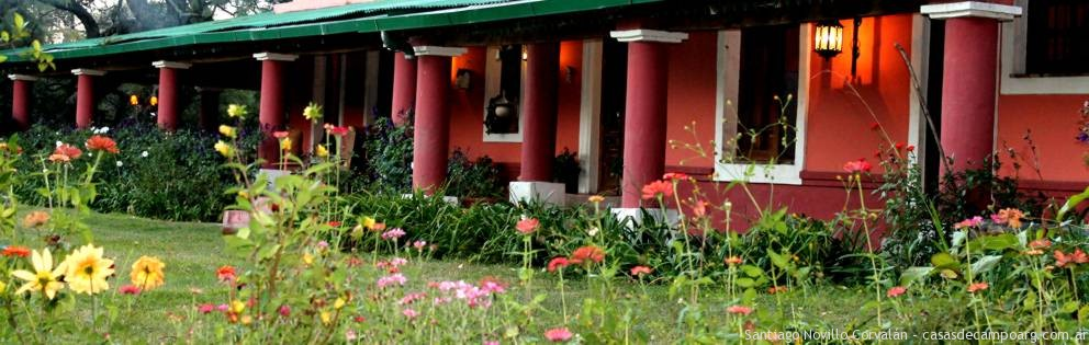 flores_jardin