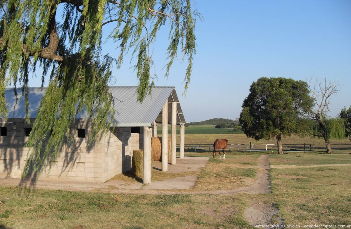 For sale equine Facilities