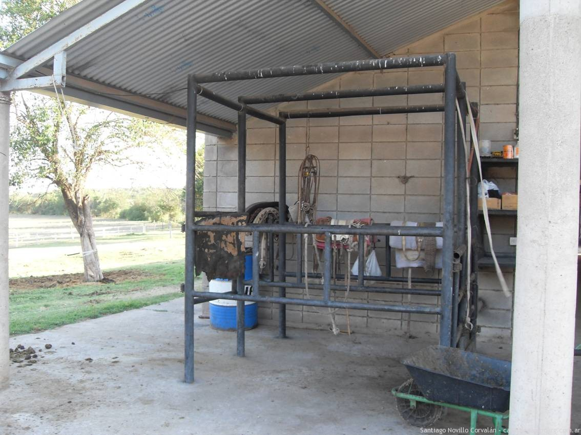 Instalaciones, reproducción equina