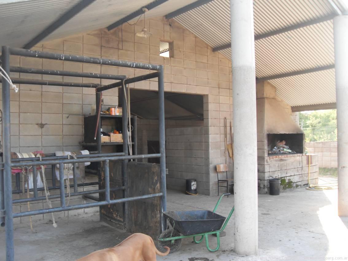 instalaciones para caballos, pastajes, boxes, chacras, picadero, pista de salto