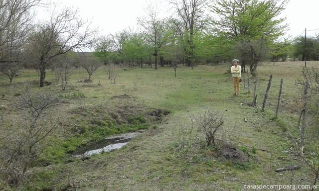 Campo con arroyo