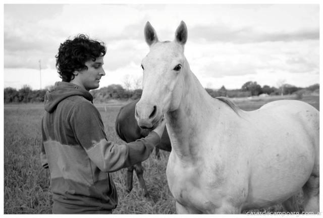 caballos_los_algarrobos