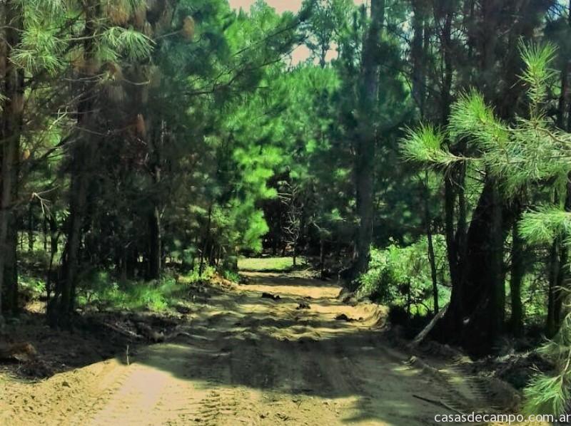 caminos_internos